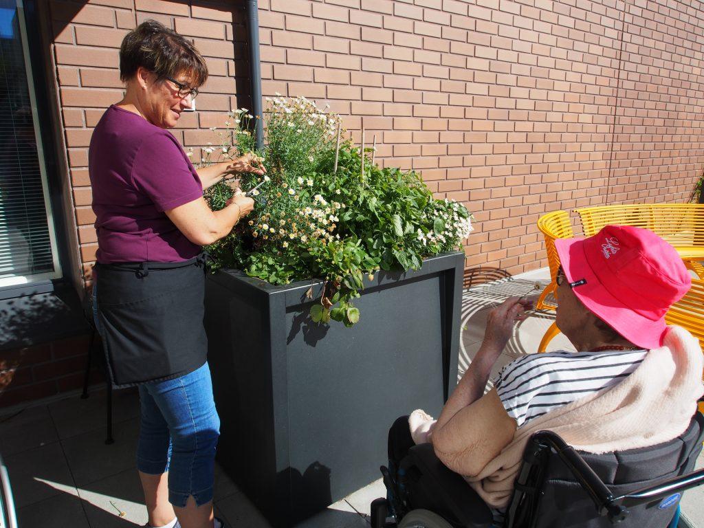 Vapaa-ajan viettoa aurinkoisena kesäpäivänä Leijontuvan pihalla. Työntekijä hoitaa kukkia ja keskustelee asiakkaan kanssa.